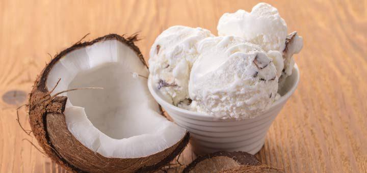 Dairy-Free Vanilla Coconut Milk Ice Cream